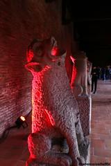 Nuit des muses 2016 au Muse des Augustins 14 (Mademoiselle MV) Tags: light red france color rouge lumire gargoyle toulouse couleur gargouille 2016 nuitdesmuses nightofmuseums musedesaugustins clotredesaugustins ndm16