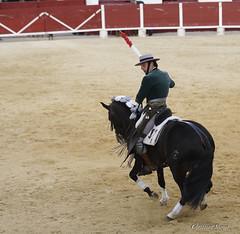 _DSC0522-2 (chris30300) Tags: france les cartagena corrida toro palavas rejon palavaslesflots flots languedocroussillonmidipyrnes languedocroussillonmidipyrn