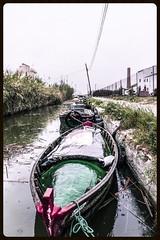 Canal de la Albufera. (Paco Esteve Herrero) Tags: valencia canal lluvia barca albufera 2016 laalbufera pacoesteveherrero franciscoesteveherrero nikond5300