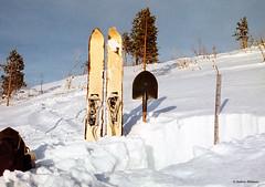Skis Siberian hunter. Film. (azh565) Tags: winter snow ski film siberia 1984 eastern sayan avalanche