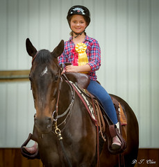 Show day-43 (Webbed Foot Photo) Tags: horses horse pennsylvania ponycamp webbedfootphotography pentaxk1 opengateranch darrenolsen dtolsen webbedfootphoto hunterhillsfarm