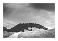 _DSC9247 (www.dmeene.de) Tags: white black mountains home forest 35mm germany dark landscape path hut melancholy matte allgu