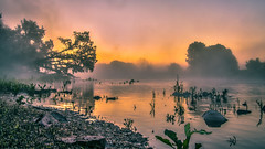misty mysterious (bocero1977) Tags: morning trees light sunset sky sun mist reflection green nature water colors fog stone clouds river germany landscape nikon outdoor foggy dust