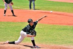 DSC_2582 (Manjhou) Tags: 2016          nikon d7200 200500mm baseball sport tainwan taoyuan  twintowergloves