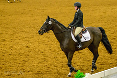 160505_D600_3682.jpg (shirley319) Tags: horse unitedstates lexington kentucky may nationals equestrian 2016 d600 horsecompetition ihsa kentuckyhorsepark