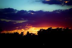 61 (_T_Willi_95) Tags: sunset summer usa lake nature beautiful night canon outdoors boat americanflag edits photograghy lakeorion canont3i rebelt3i