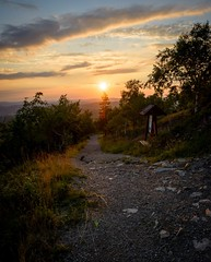 The right path (matejsimek) Tags: sunset sign gold trail choice