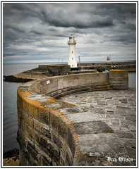 Lighthouse Curve (D.k.o.w) Tags: horse lighthouse beach harbour tide pony northernireland trot gallop ulster donaghadee irishsea harbourwall northdown canon7dmkii granshaequestriancentre