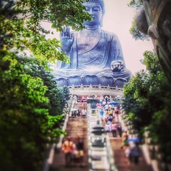 Buddha, Hongkong (stromlinienbaby) Tags: china park travel tree statue stairs square hongkong worship asia buddha religion pray buddhism holy squareformat mayfair pilgrims buddhastatue travelphotography iphoneography instagramapp uploaded:by=instagram