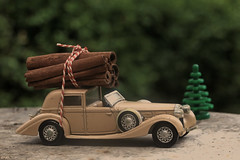 Transport ;-) (eleni m) Tags: transport toy car tree cinnamonsticks lashing boxwood delage scalemodel vintage dof outdoor tabletop solido france wheels windows headlights