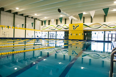 Newly-Renovated Indoor Pool (USF Campus Recreation) Tags: college pool swimming swim campus university florida outdoor south indoor center recreation olympic workout fitness gym usf learn gymnasium lessons lanes rec learntoswim indoorpool swimlessons universityofsouthflorida outdoorrecreation usfcampusrec swimwithme usfcampusrecreation