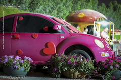 Love Car (hisalman) Tags: flowers classic love car canon garden dubai miracle canon70d