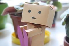 IMG_3916 (teeramy) Tags: love paper heart handmade paperman danbo