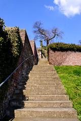 Coteaux de la Citadelle (Lige 2015) (LiveFromLiege) Tags: lige liege luik lttich liegi lieja patrimoine architecture 2015 coteaux de la citadelle terrasse des minimes  coteauxdelacitadelle wallonie belgique belgium