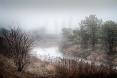 Foggy Morning (Repp1) Tags: canada fog stream bc surrey crescentbeach brouillard ruisseau