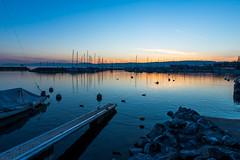 _DFX6251 (sandip de) Tags: lake landscape switzerland lausanne ouchy sandip sandipde