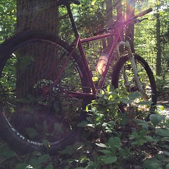 After dinner dirt. #weavercycleworks #custombicycles #singlespeed #29er
