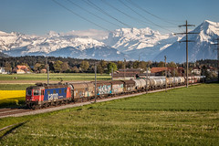 SBB Cargo: Re 620 051 (Pascal Hartmann Photography) Tags: train switzerland sbb cargo freight trainspotting swissalps berneroberland swissmountains dornach kiesen 11651 re620