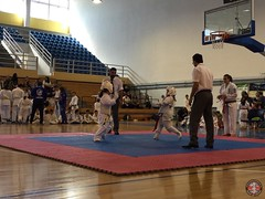 stefanou_15_5_2016_knockdown_134