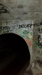 Into the Dark (800Spiders) Tags: urban vancouver dark concrete island graffiti bc pipe columbia victoria drain british douglas exploration drainpipe ue urbex darkie draining