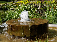 Berlin Marzahn - Grten der Welt (micharl_be) Tags: berlin springbrunnen brunnen marzahn wasserspiele grtenderwelt