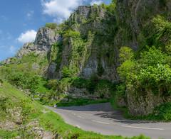 Chedder Gorge (iankent1963) Tags: uk trees west green spring nikon rocks flickr south rocky somerset caves gorge cheddar d5100