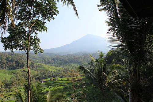 Mount Batukaru, Tabanan, Bali