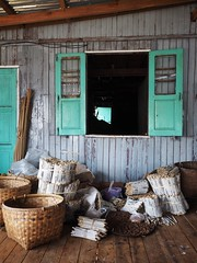 Whackin' White Cheroots (Feldore) Tags: road lake green industry factory burma cottage homemade shutters cigars myanmar inle burmese mandalay kipling cheroot manufacturing cheroots