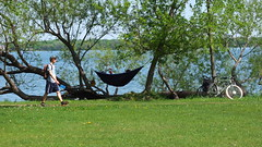 (sfrikken) Tags: park dog lake bicycle place madison hammock croquet monona yahara