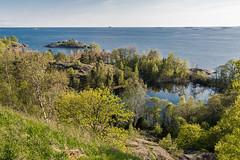 4Y1A7987 (Ninara) Tags: sea summer nature finland island helsinki kes vallisaari historiakohde sotilassaari