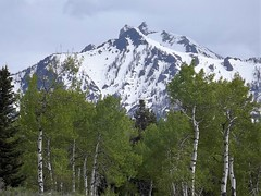 2016 05 19 Grand Teton national Park 42a (omigosz) Tags: mountain wyoming grandtetonnationalpark