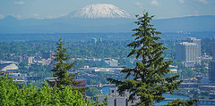 Mt St Helens from the Top of the Tram (dog97209) Tags: from st oregon portland volcano is downtown mt top tram again helens active shaking