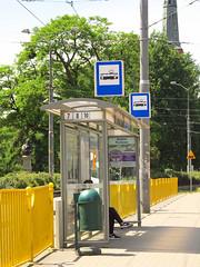 Tram stop in Szczecin (transport131) Tags: tram stop przystanek tramwaj szczecim zditm brama portowa infrastruktura infrastructure