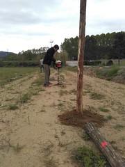 """Preparant el pati per estocar fusta i biomassa <a style=""""margin-left:10px; font-size:0.8em;"""" href=""""http://www.flickr.com/photos/134196373@N08/27276598041/"""" target=""""_blank"""">@flickr</a>"""