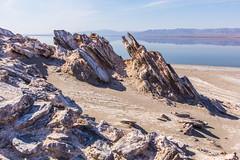 Interesting terrain on Mullet Island on the Salton Sea (slworking2) Tags: california us unitedstates desert saltonsea calipatria mulletisland