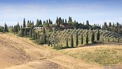20160704_crete_senesi_siena_tuscany_6667a (isogood) Tags: italy landscapes horizon country scenic tuscany crete siena cretesenesi asciano senesi