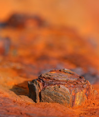 rusty bolt macro (spencerrushton) Tags: door old red sun colour macro canon outdoors rust 100mm bolt spencer crusty manfrotto rushton canonl canonlens manfrottotripod rustybolt canon100mmf28lmacroisusm spencerrushton 760d canon760d efcanon100mmf28lmacroisusm