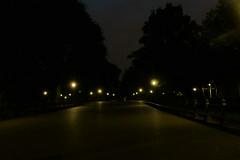 central park tonight (Dumbo711) Tags: centralpark