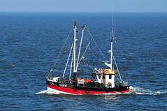 Cux 6 (Auto350) Tags: elbe cuxhaven fischkutter krabbenkutter