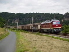 EBS 232 334 (jvr440) Tags: railroad train locomotive bahn railways trein spoorwegen ludmilla rathen kurort ebs br232 erfurter locomtief servivce br132