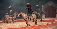 MaCeo Acrobatic Equestrian Experience