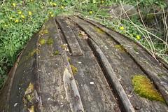 Gammel båt -|- Old boat hull (erlingsi) Tags: båt skrog hull bunn botn robåt pram eikrem volda mose moss decay treverk madeofwood