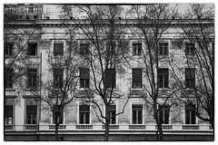 Lyon, Ville (3) (Salva Pags) Tags: blackandwhite bw france blancoynegro lyon collection francia serie blancinegre blancetnoir onlylyon roinealps
