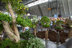 Garten outdoor Stuttgart 2015 (kai.anton) Tags: world auto sport yoga mercedes benz und outdoor energie haus fair porsche bmw motor audi holz garten schmuck kreativ mineralien fossilien handeln