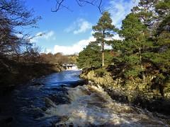 Low Force (trev.pix) Tags: winter river waterfall sunny rapids tees winterlandscape splashingwater lowforce rivertees middletonteesdale canonsx50