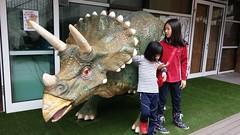 헤이리 (LeeWonHee) Tags: 헤이리 해 공룡 솔 트리케라톱스