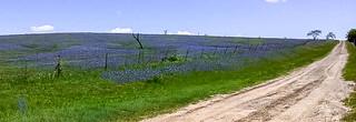 Blue Mound_133343.2