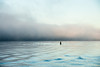 silence is easy (bluechameleon) Tags: ocean seascape color colour nature water fog vancouver seawall buoy secondbeach engishbay bluechameleon artlibre sharonwish artlibres bluechameleonphotography