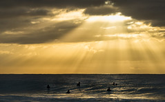Wave watching at Whale Beach (Colin_Bates) Tags: beach sunrise surf nsw beaches surfers whale sunrays northern