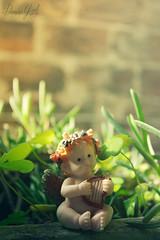 Nro 144 (Photo X Creative) Tags: naturaleza color colour verde green nature angel garden photography nikon photographer fotografia proyectofotografico